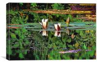 Airbrushed Water Lilies, Canvas Print