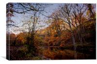 Woodland Winter Walk, Canvas Print