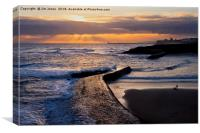 New day on Cullercoats Bay, Canvas Print