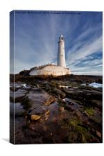St Mary's Island and Lighthouse (Portrait view), Canvas Print