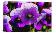 Artistic Purple Pansies, Canvas Print