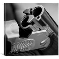 Shot Gun 1 B&W, Canvas Print