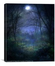 Moonlit Walk, Canvas Print