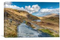 Lake Teyrn Path, Canvas Print