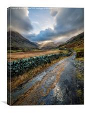 Valley Sunlight, Canvas Print