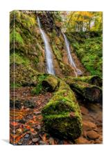 Grey Mares Tail Waterfall, Canvas Print