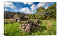 Welsh Cottage Ruin, Canvas Print