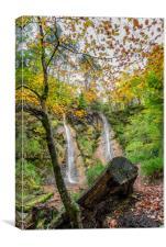 Autumn Waterfall, Canvas Print