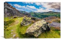Quarry Steps Snowdonia, Canvas Print