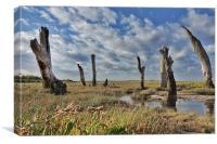 Old wooden posts Thornham marsh, Canvas Print