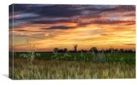 Sunset over Bircham windmill in Norfolk , Canvas Print