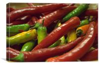 chillies, red & green, Canvas Print