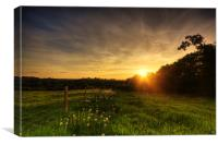 Dandelion Trail Sunset in Herefordshire, Canvas Print