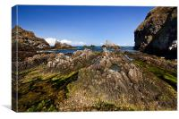 Rocky Seascape in Aberdeenshire, Canvas Print