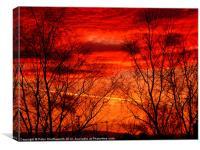 Fiery Trees, Canvas Print