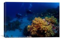 Reef Scene, Canvas Print