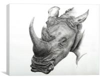 White Rhino fine art sketch, Canvas Print