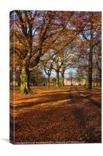 Woodland Park at Dunham Massey, Canvas Print