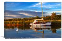 Sailboat moored at Horsey Mere, Canvas Print