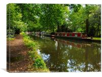 Narrowboats moored on the Wey Navigation in Surrey, Canvas Print
