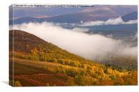 View of the Glenmore Forest and the Cairngorms, Canvas Print