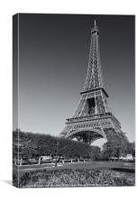 Eiffel Tower in Spring III, Canvas Print