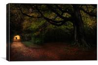 Autumn stroll, Canvas Print