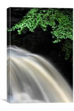 waterfall view, Canvas Print