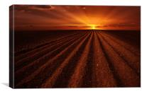 Ploughmans sunset, Canvas Print