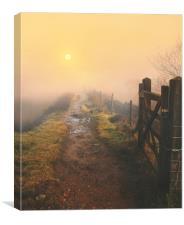 Morning sunrise, Canvas Print