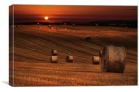 Harvest sunset, Canvas Print