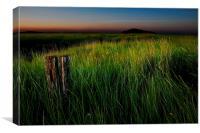 Just grass, Canvas Print