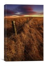 moorland sunset, Canvas Print