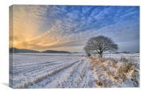A winters scene, Canvas Print