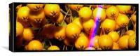 Orange berry, Canvas Print