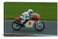 Racing sidecar at Snetterton racetrack , Canvas Print