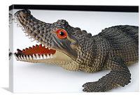 alligator scaler, Canvas Print