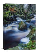 Mystical Burbage Brook, Canvas Print