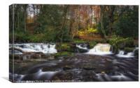 Rivelin Falls in Autumn, Canvas Print