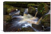 Wyming Brook Pool, Canvas Print