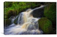 Wyming Brook in Flow, Canvas Print
