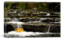 Colne waterfall, Canvas Print