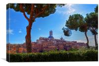Siena, Canvas Print