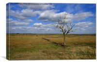 Tollesbury Marshes, Canvas Print