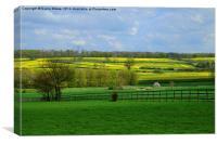 Rural Essex, Canvas Print