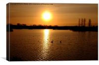 Abberton Reservoir, Canvas Print