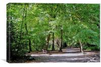 Highgate Wood London, Canvas Print
