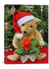 Christmas Bear , Canvas Print