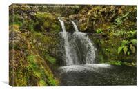 Madeiran Waterfall, Canvas Print