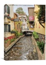 Old Funchal, Canvas Print